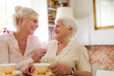 Smiling beautiful caregiver and senior lady at home